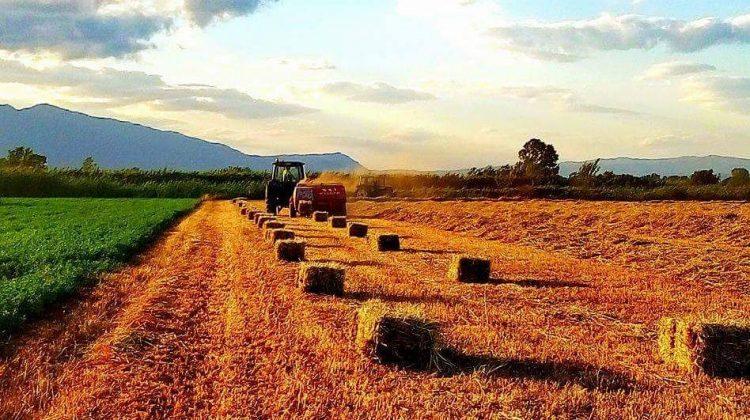 Σε 152 Τρικαλινούς αγρότες της Δράσης Βιολογικής Γεωργία διανέμονται 617.000 €